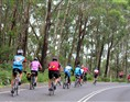 RACV Great Victorian Bike Ride 2014