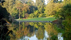 Ornamental Lake at RBG Melbourne