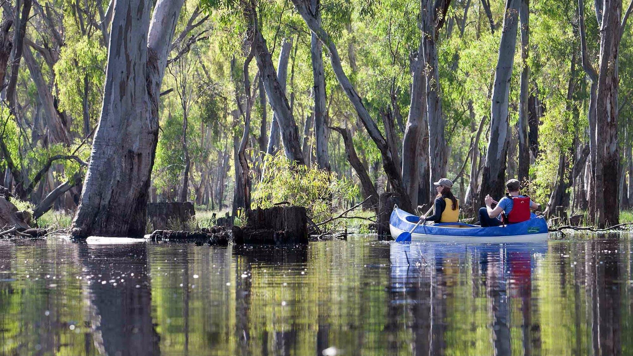 Edward River canoe and kayak trail