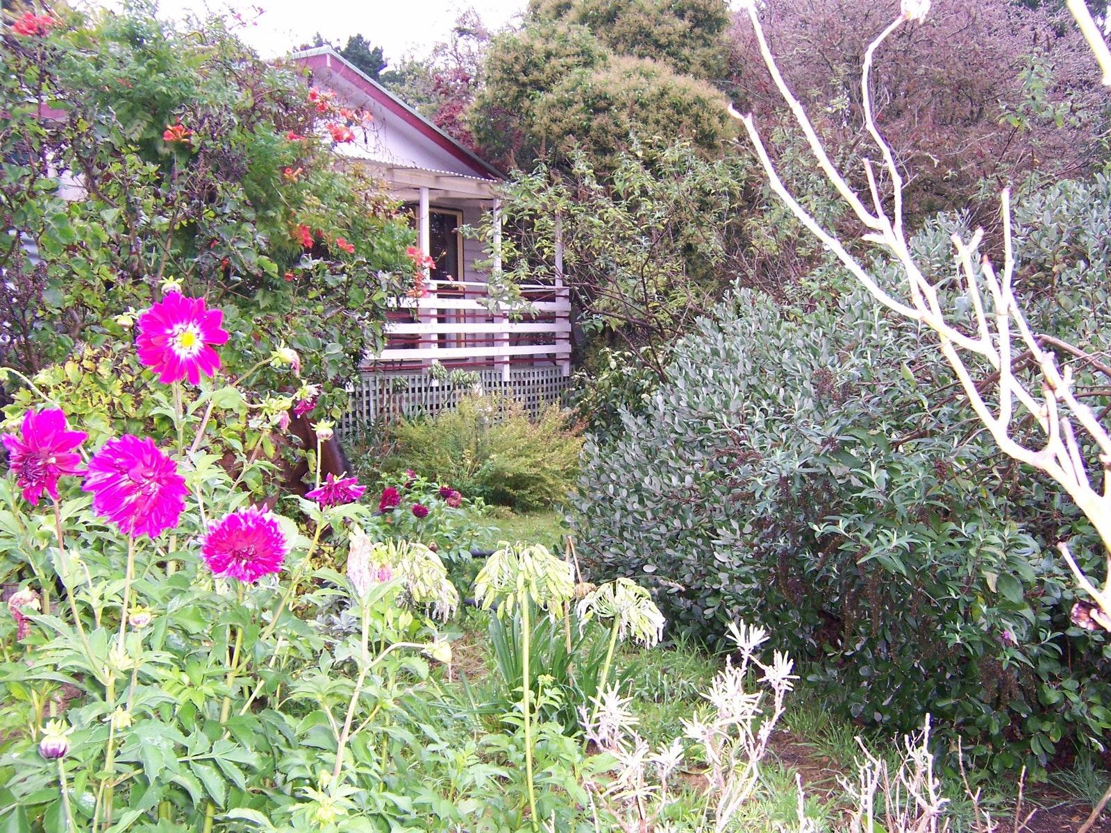 Goldmine Cottage