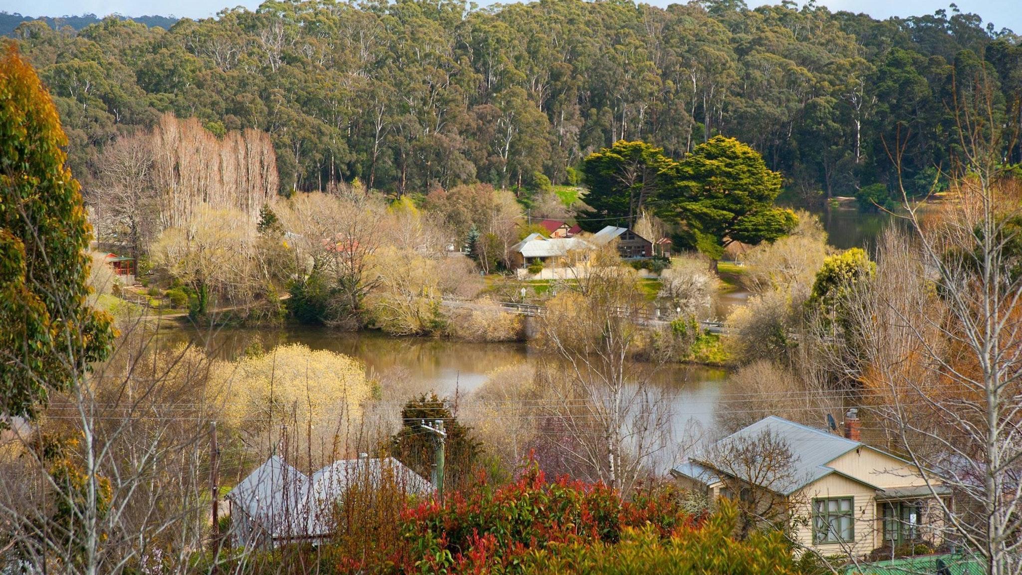 Serendip Cottage view