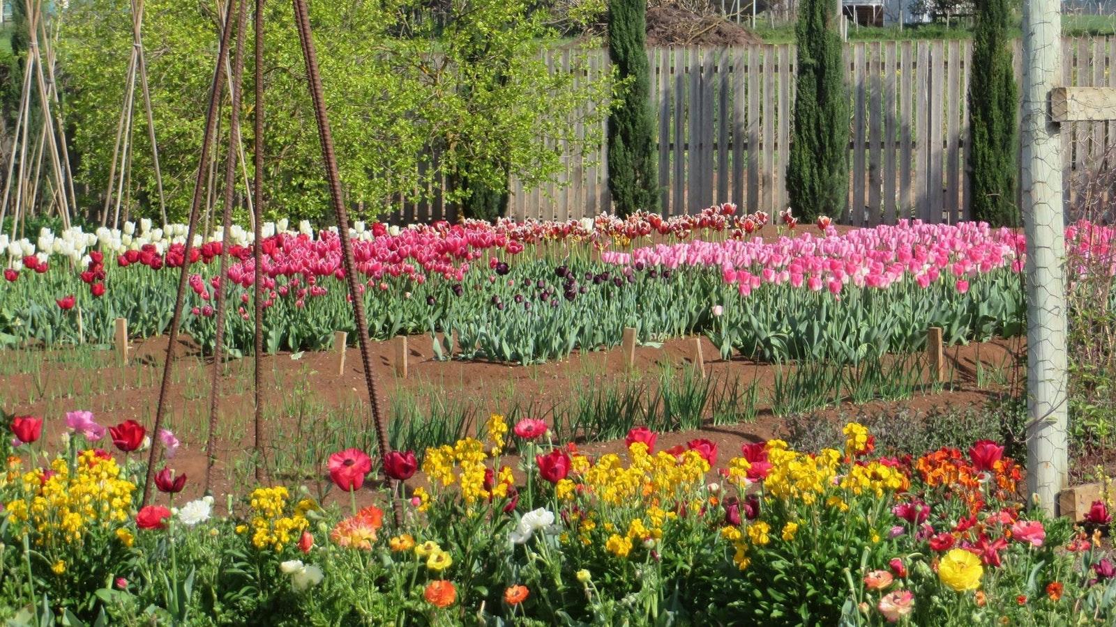 Garden Lovers Weekend