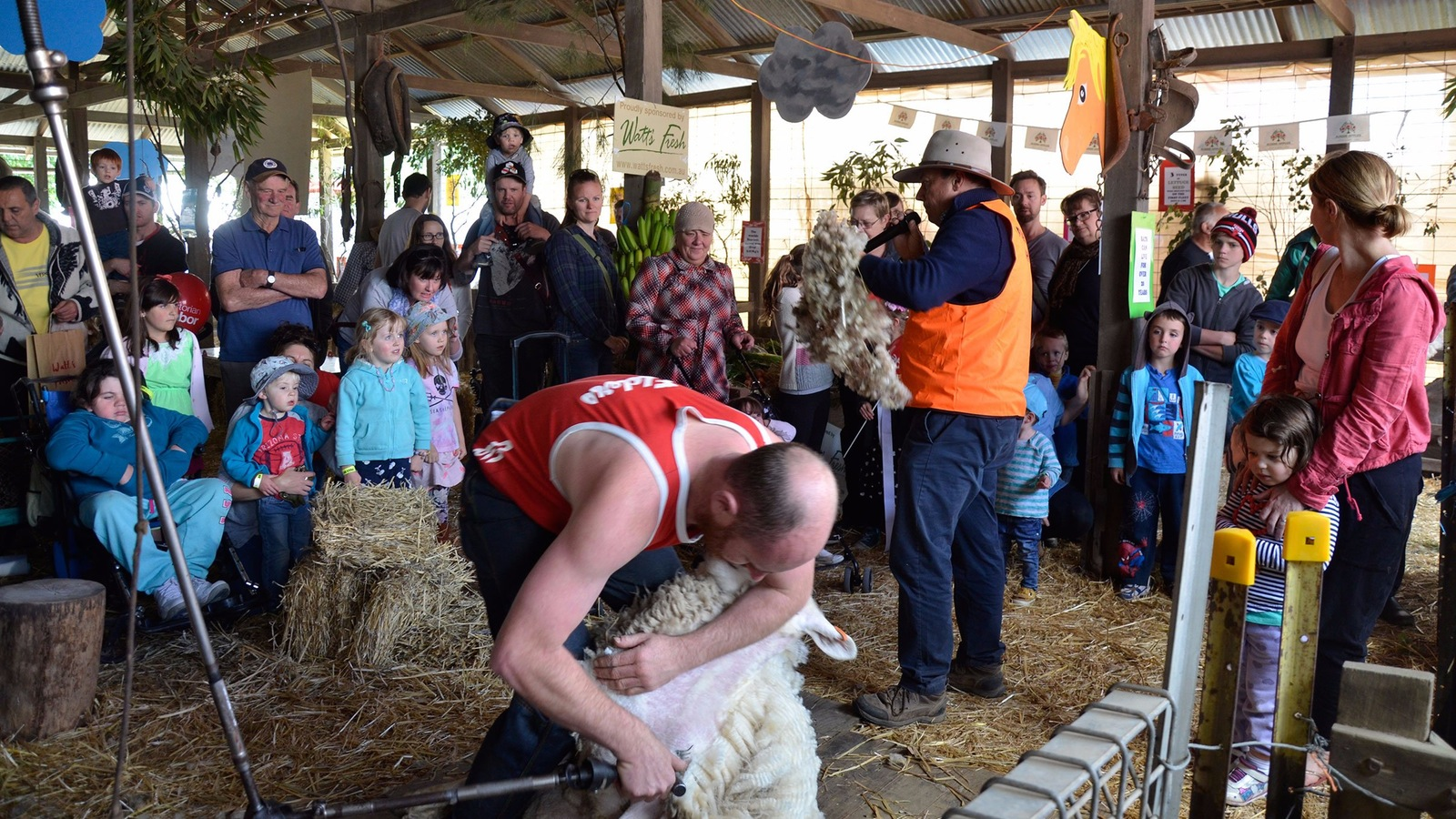 The farm shed is one of the most popular attractions at the show