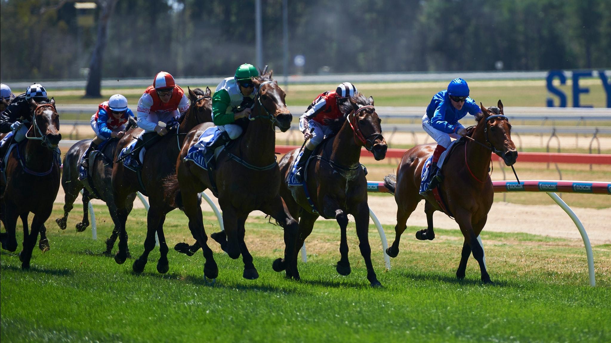 Racing at Seymour