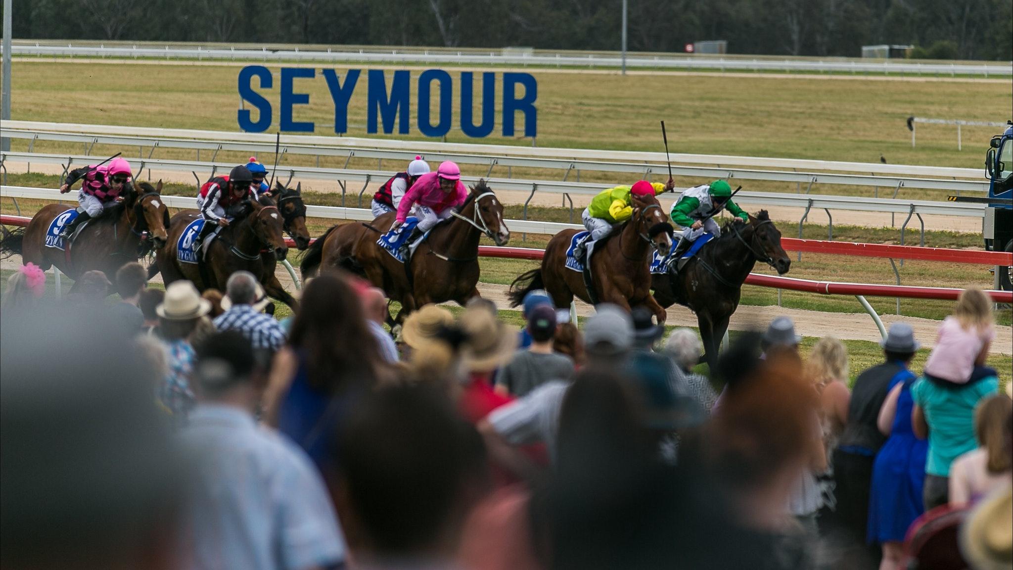 Seymour racing