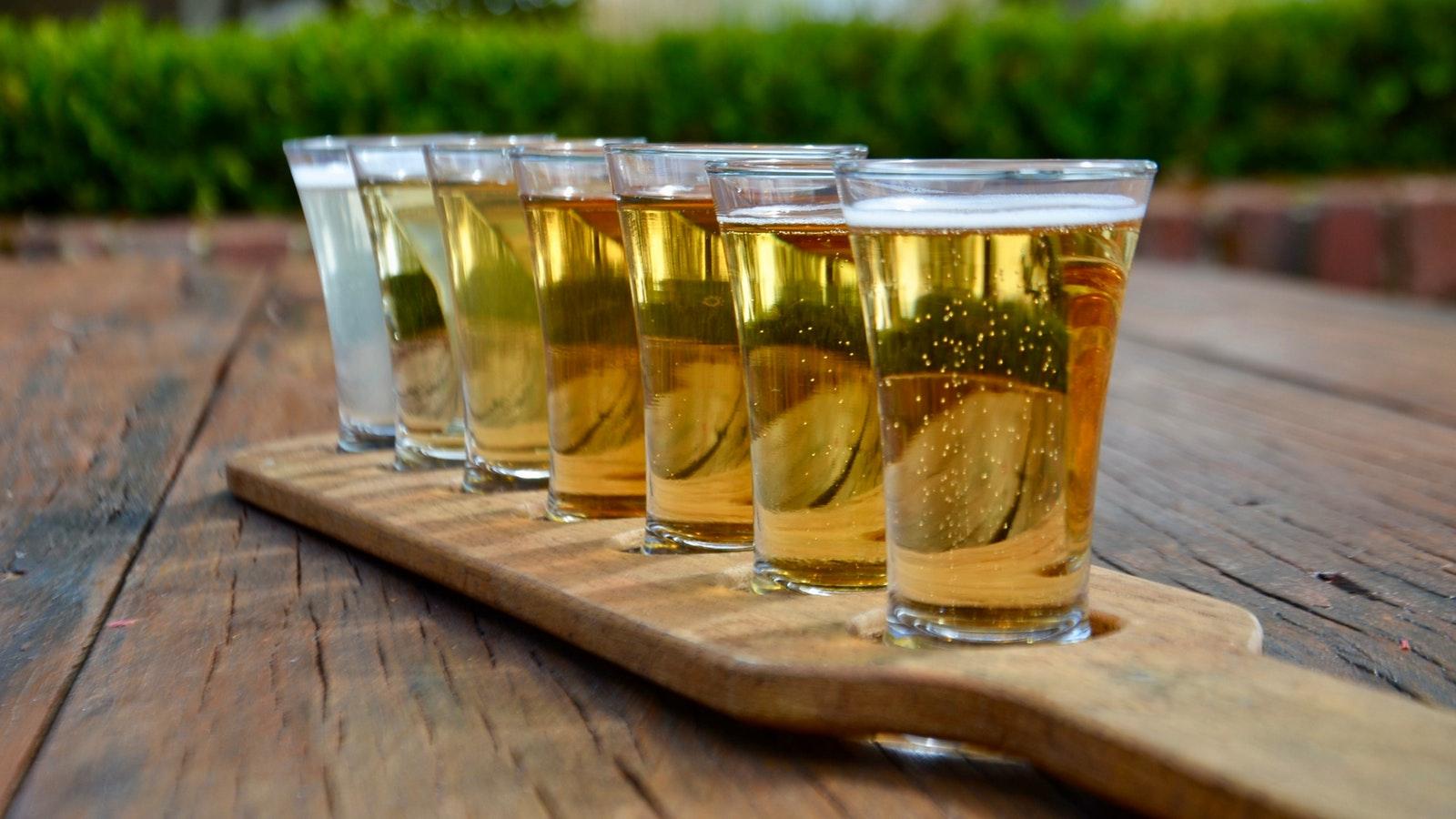 Cider Tasting Paddle