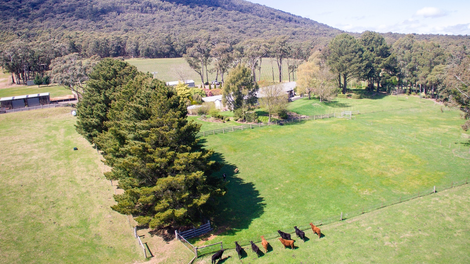 Great view of Mount Macedon Winery from above
