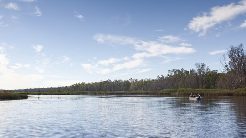 View of the river, Murray Valley National Park. Photo: David Finnegan