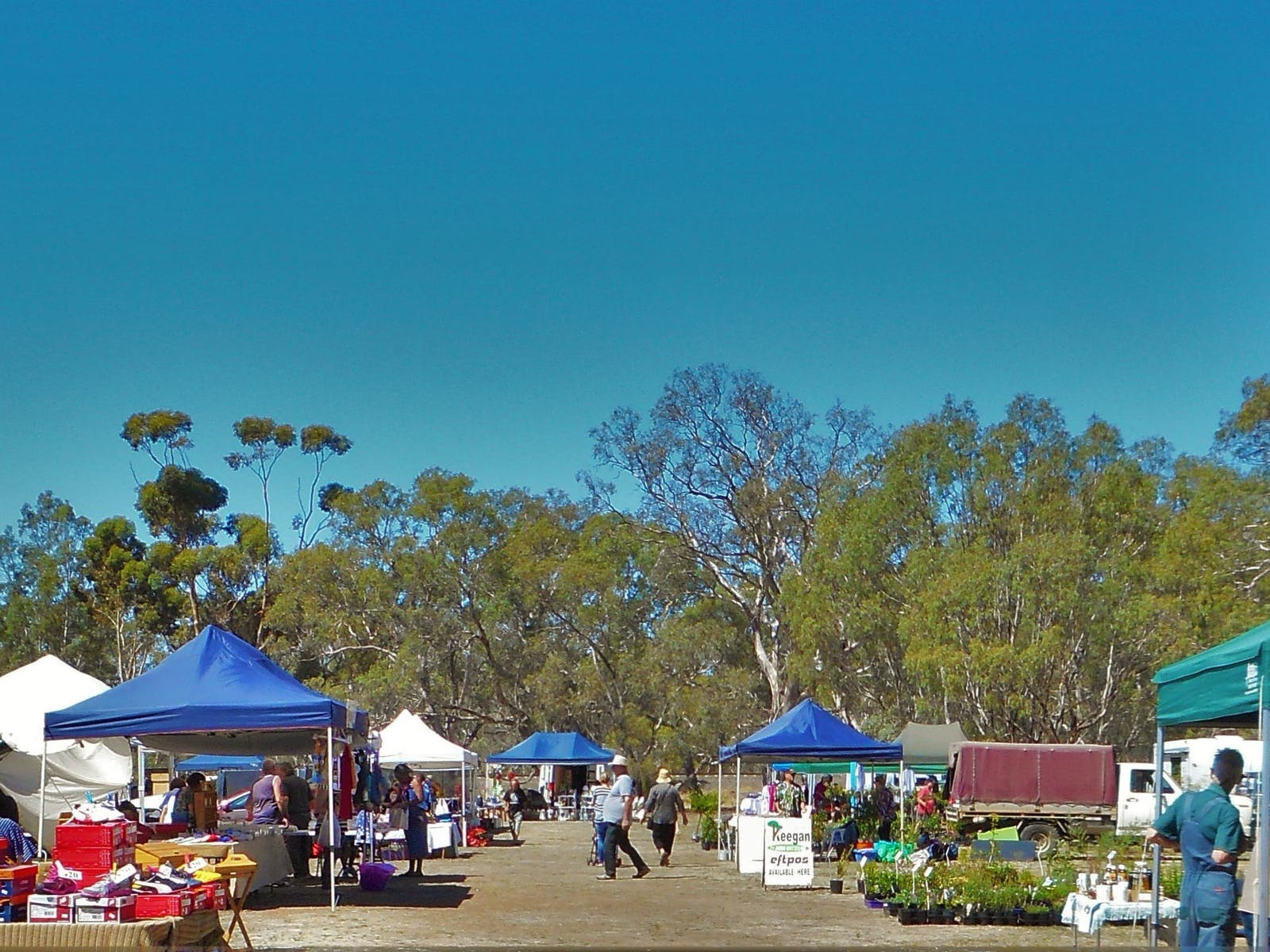 On the Jung reserve is a stall lined walkway with produce and plants