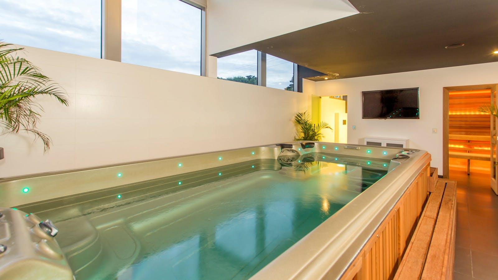 Swim Spa and Sauna