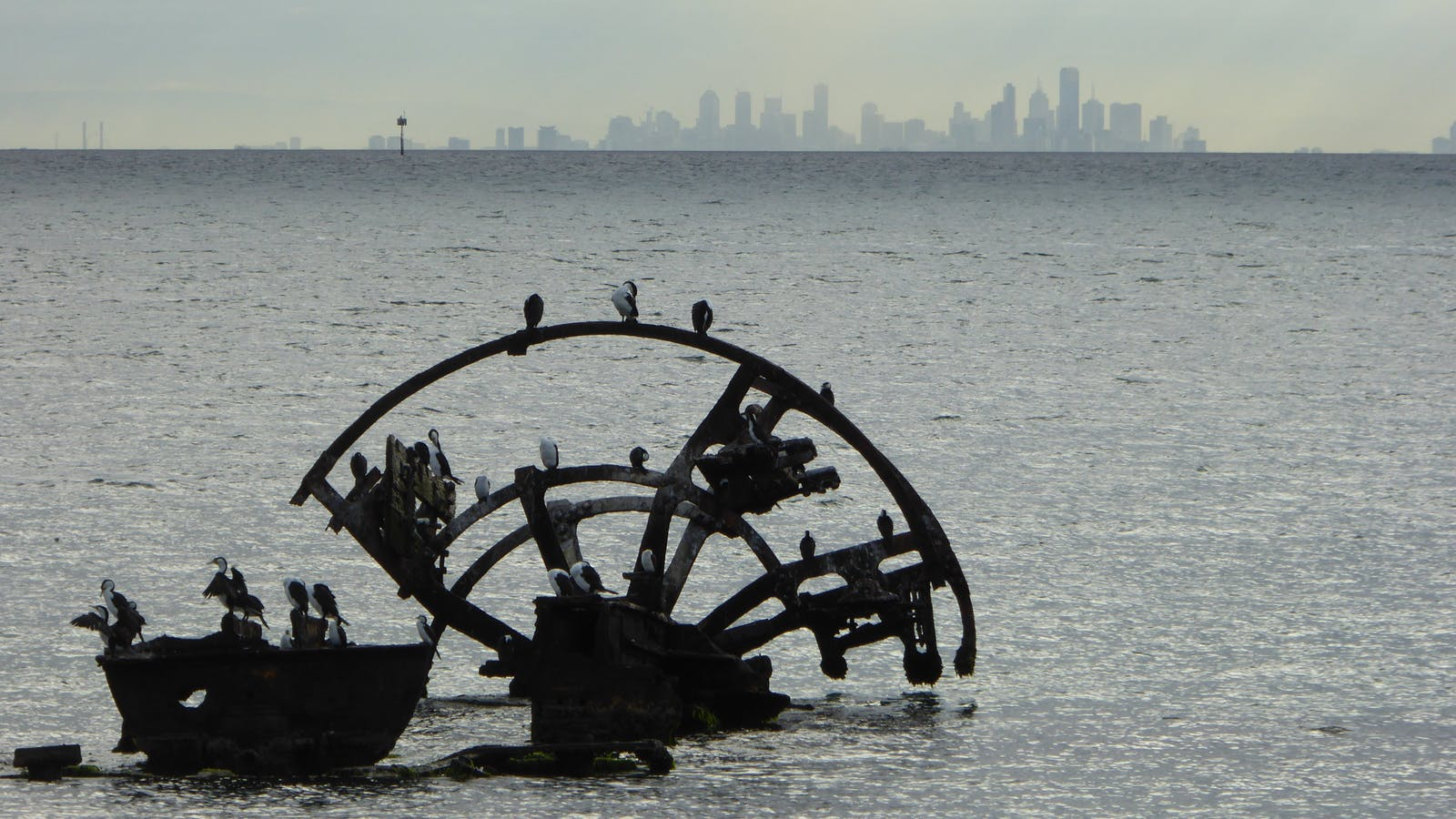 Ozone wreck and Melbourne skyline