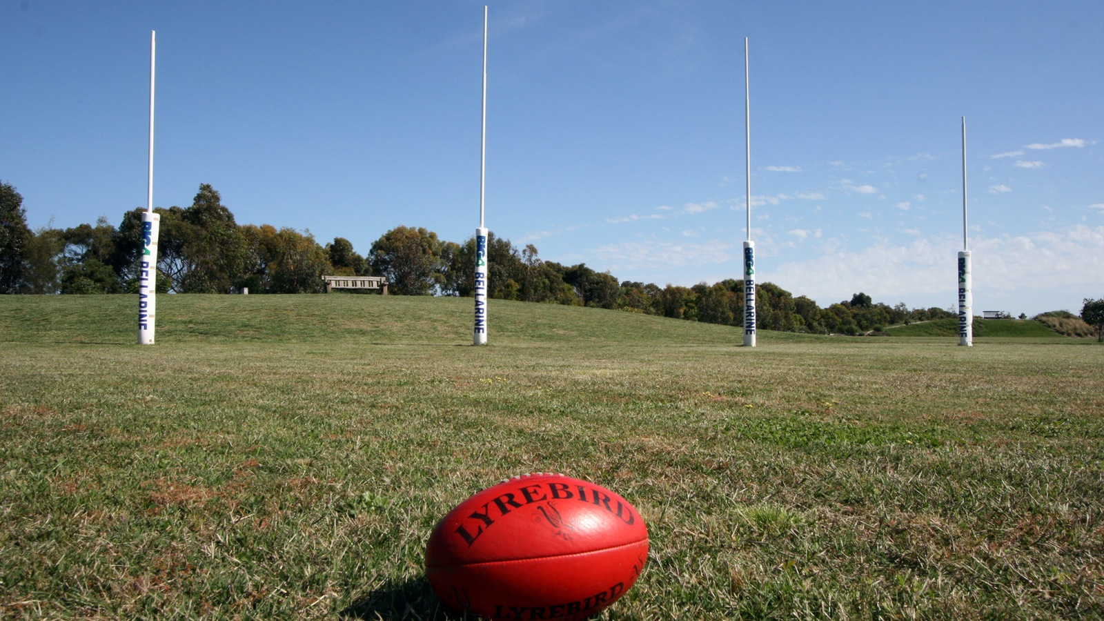 Full Sized Footy Goals