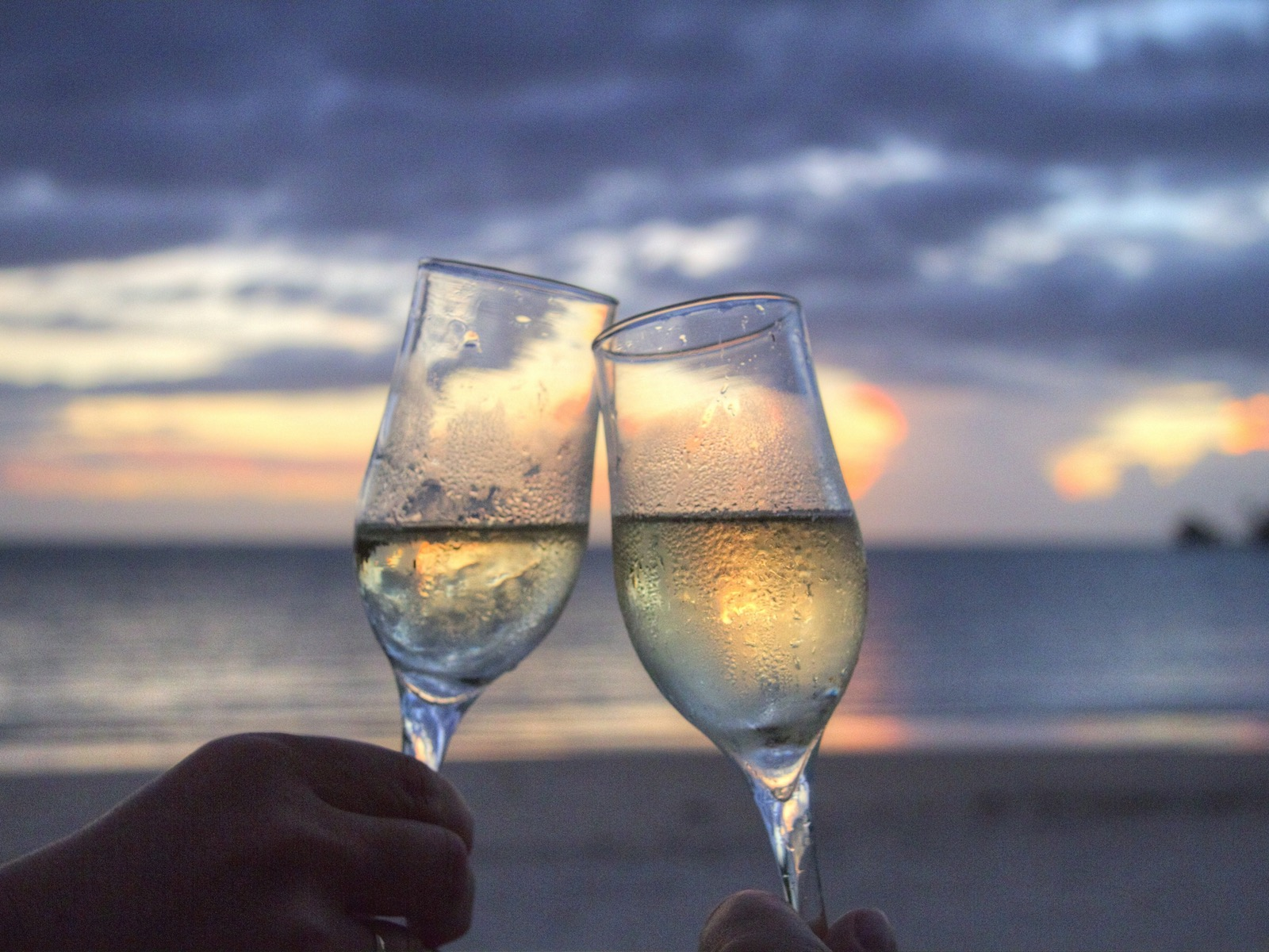 Mother's Day celebrate champagne mother's day special restaurant bubbles queenscliff