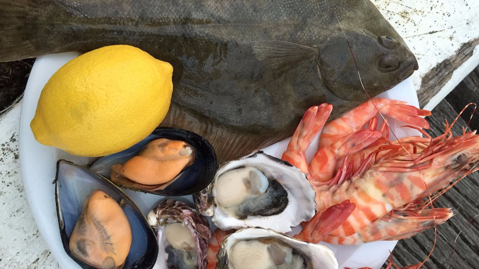 Fresh from the sea to your kitchen!
