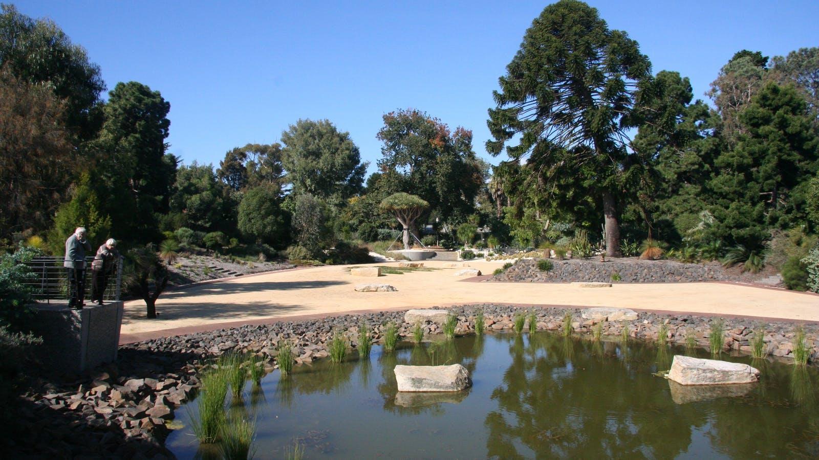 Geelong Botanic gardens 21st Century Garden