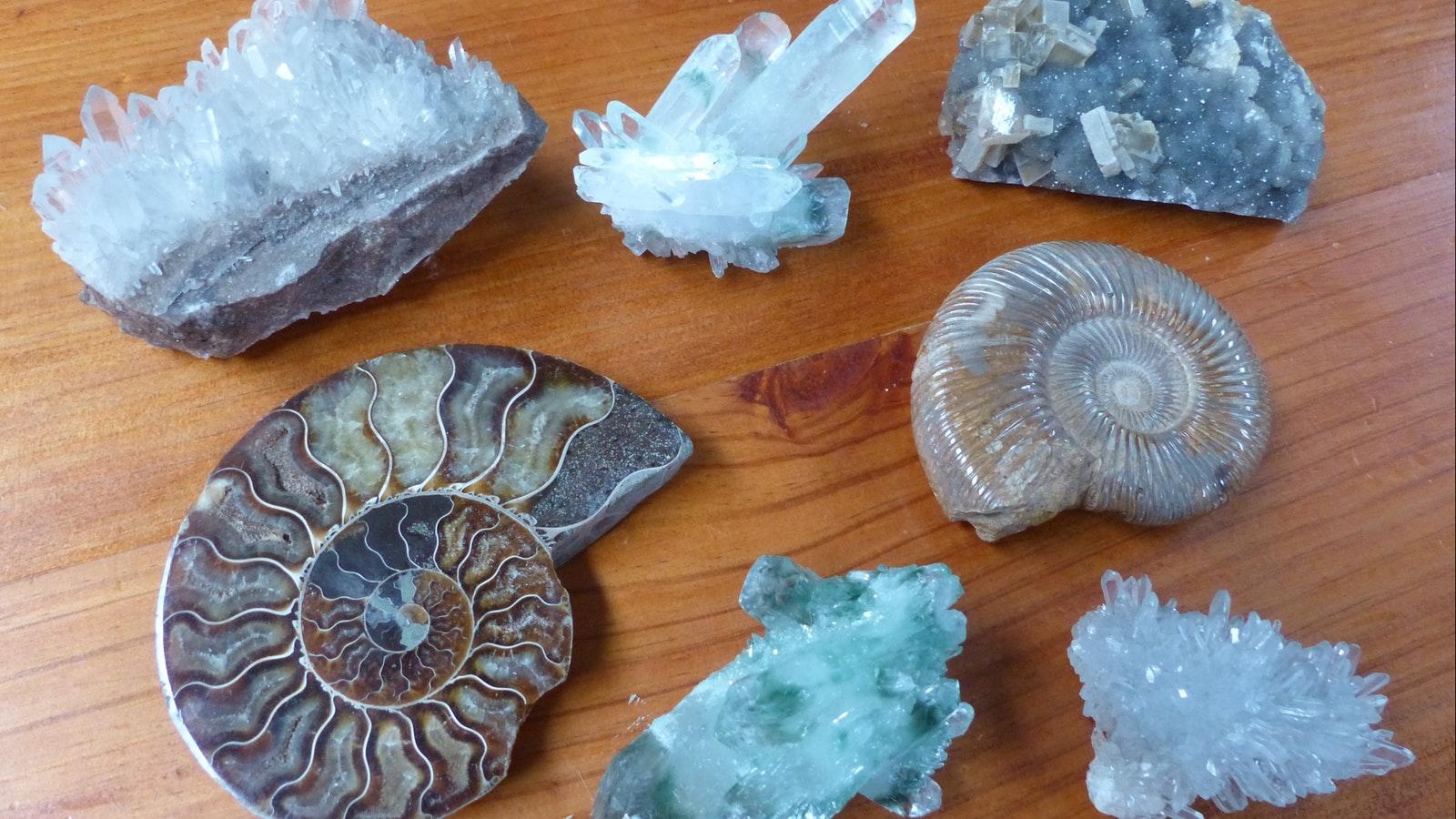 Minerals & Fossils