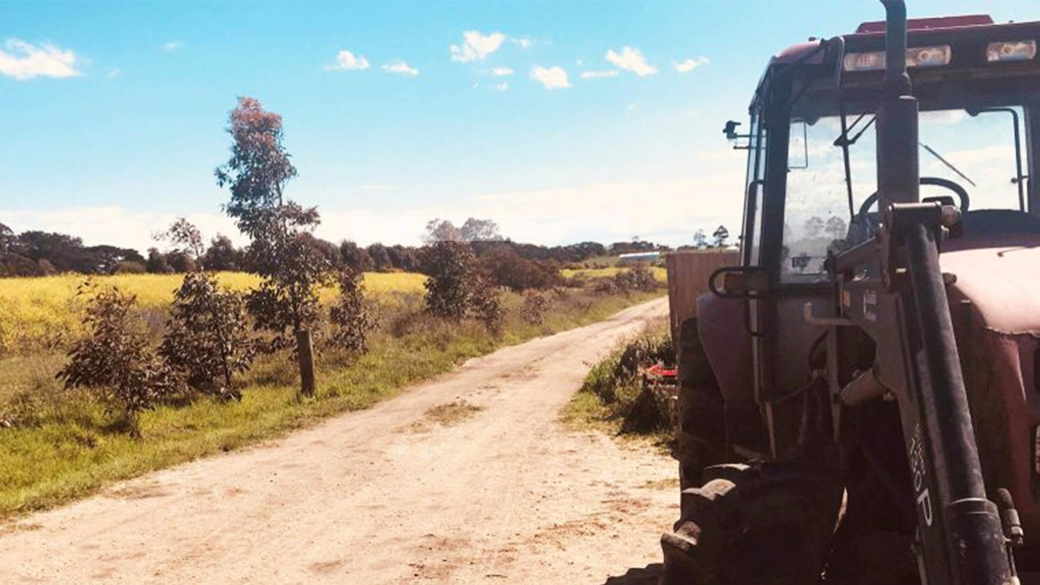 Harvest Hinterland - Follow the Harvest trail for a produce showcase tour