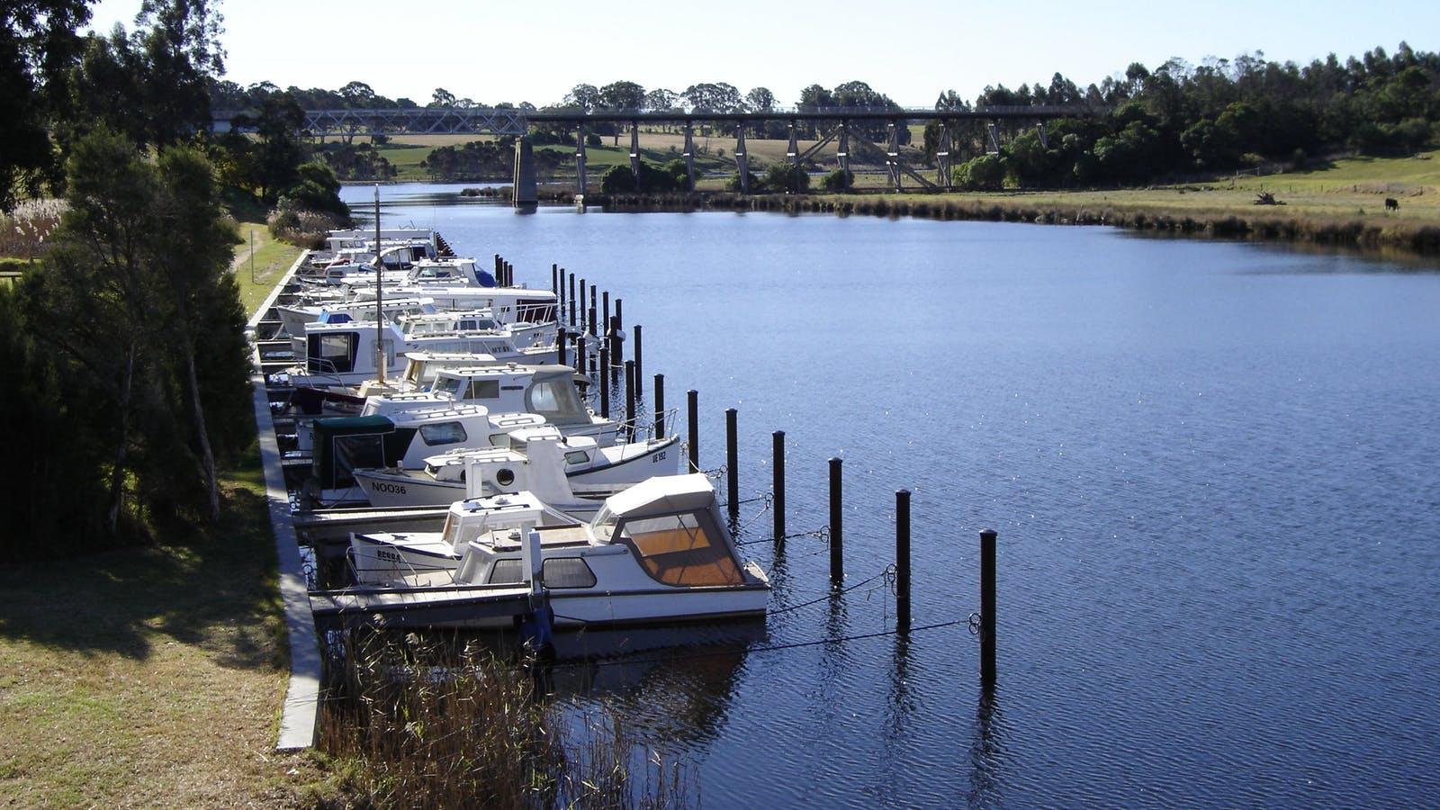 Boat moorings on the Nicholson River