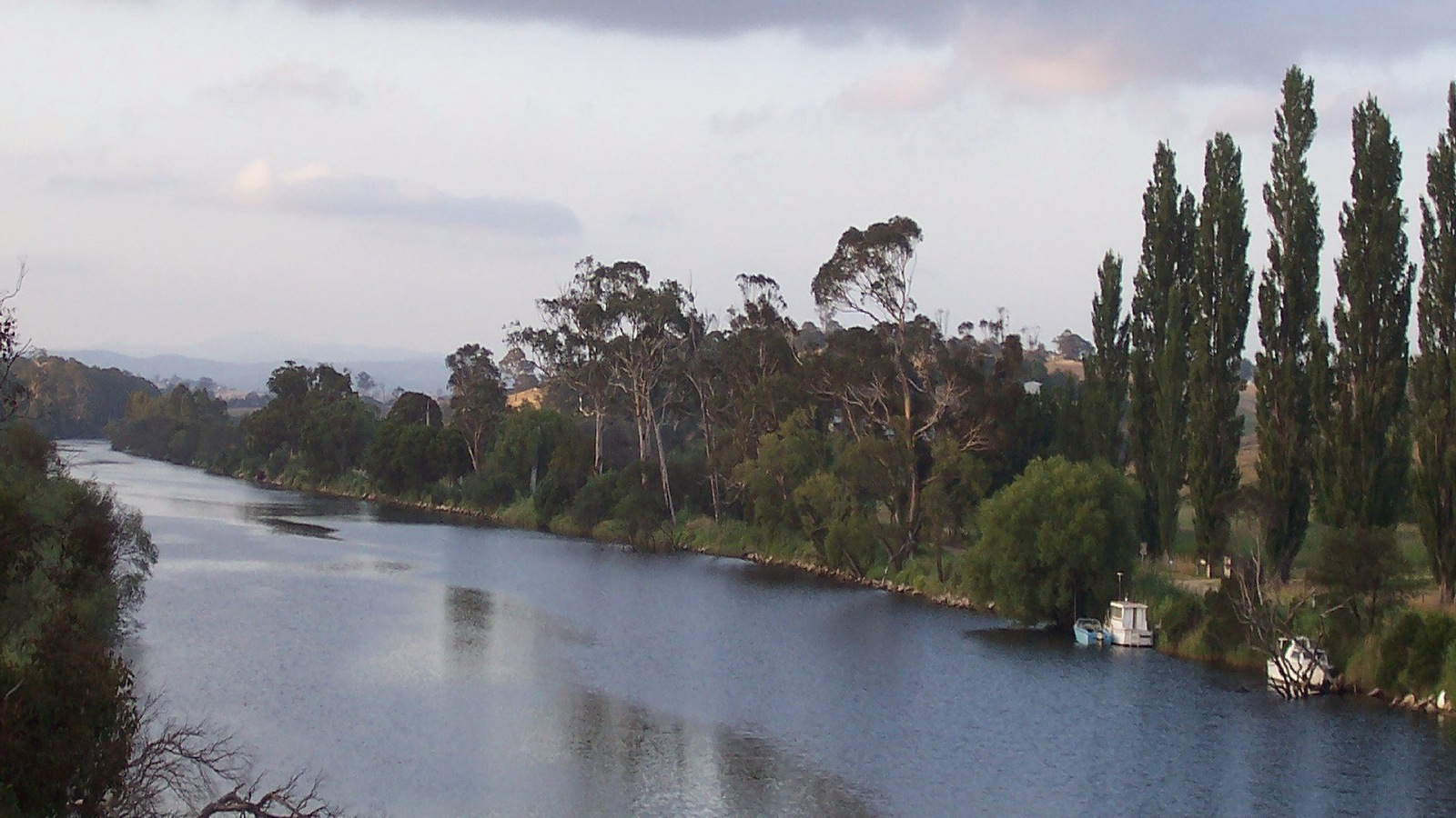The Tambo River at Swan Reach