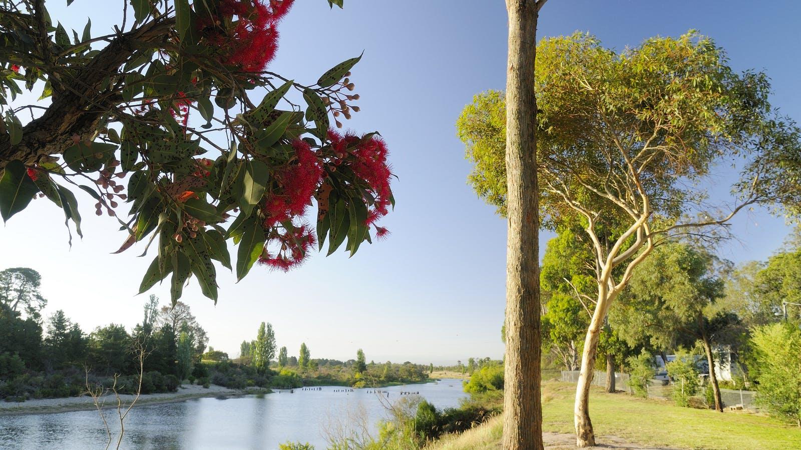 Magnificent River Views