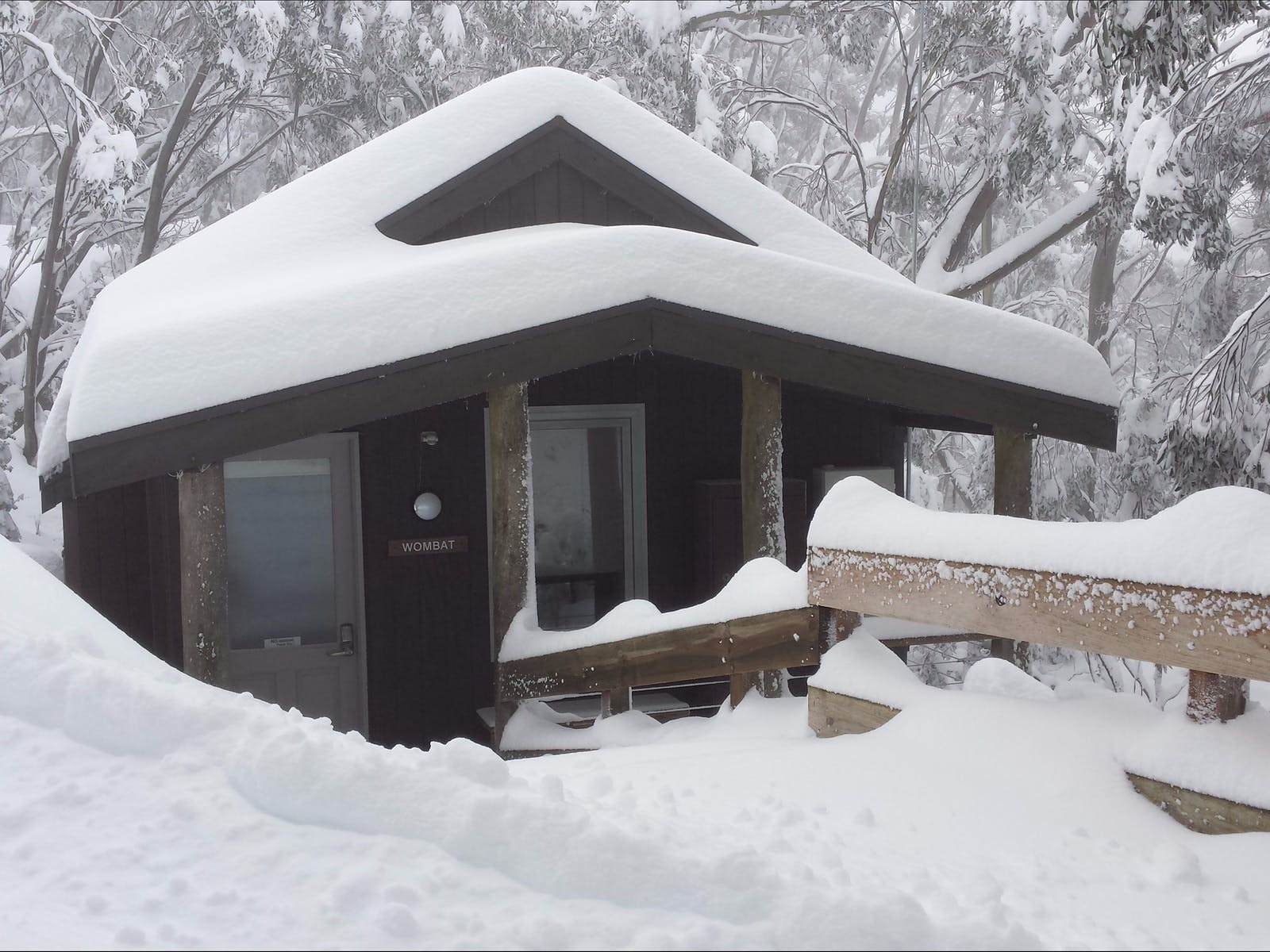 Wombat Cabin during winter