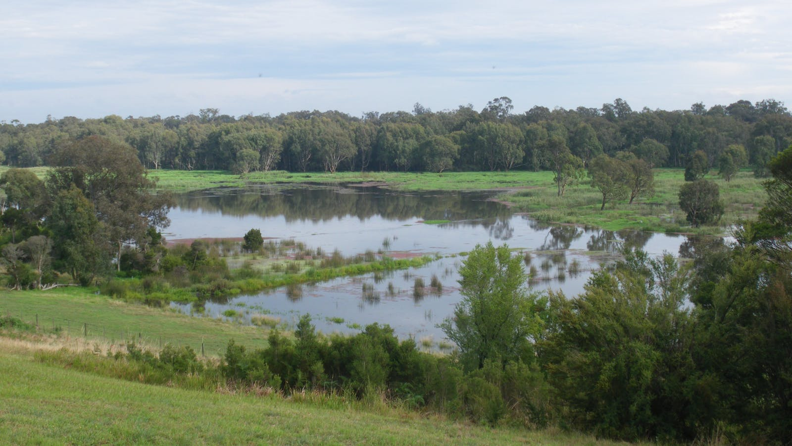 Spectacular wetland under water after rains early 2011