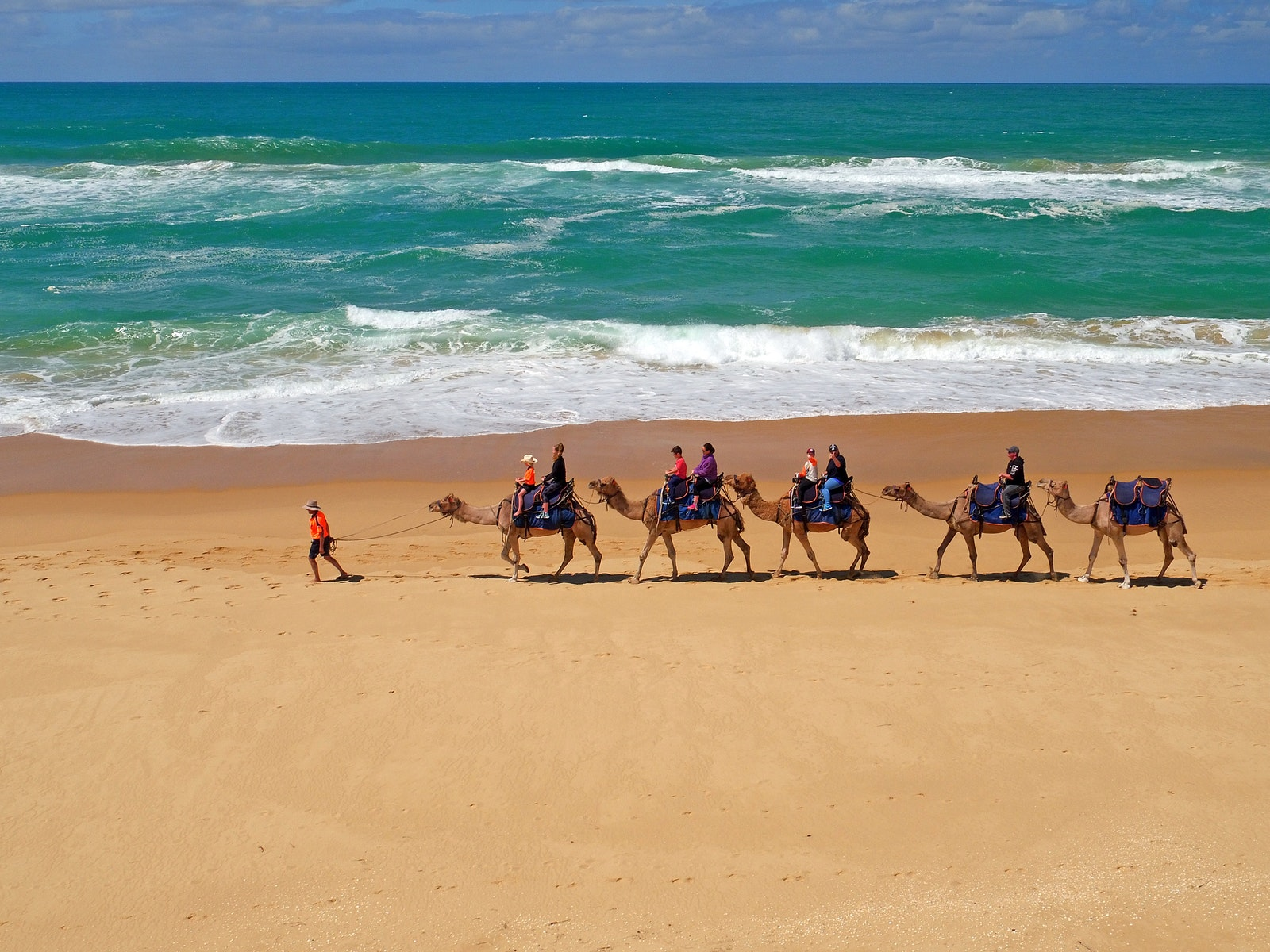 Lakes Entrance Camel Rides