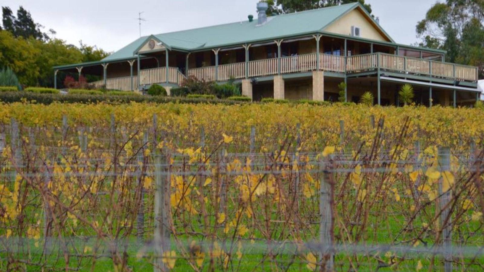 deVine Restaurant from the Vineyard