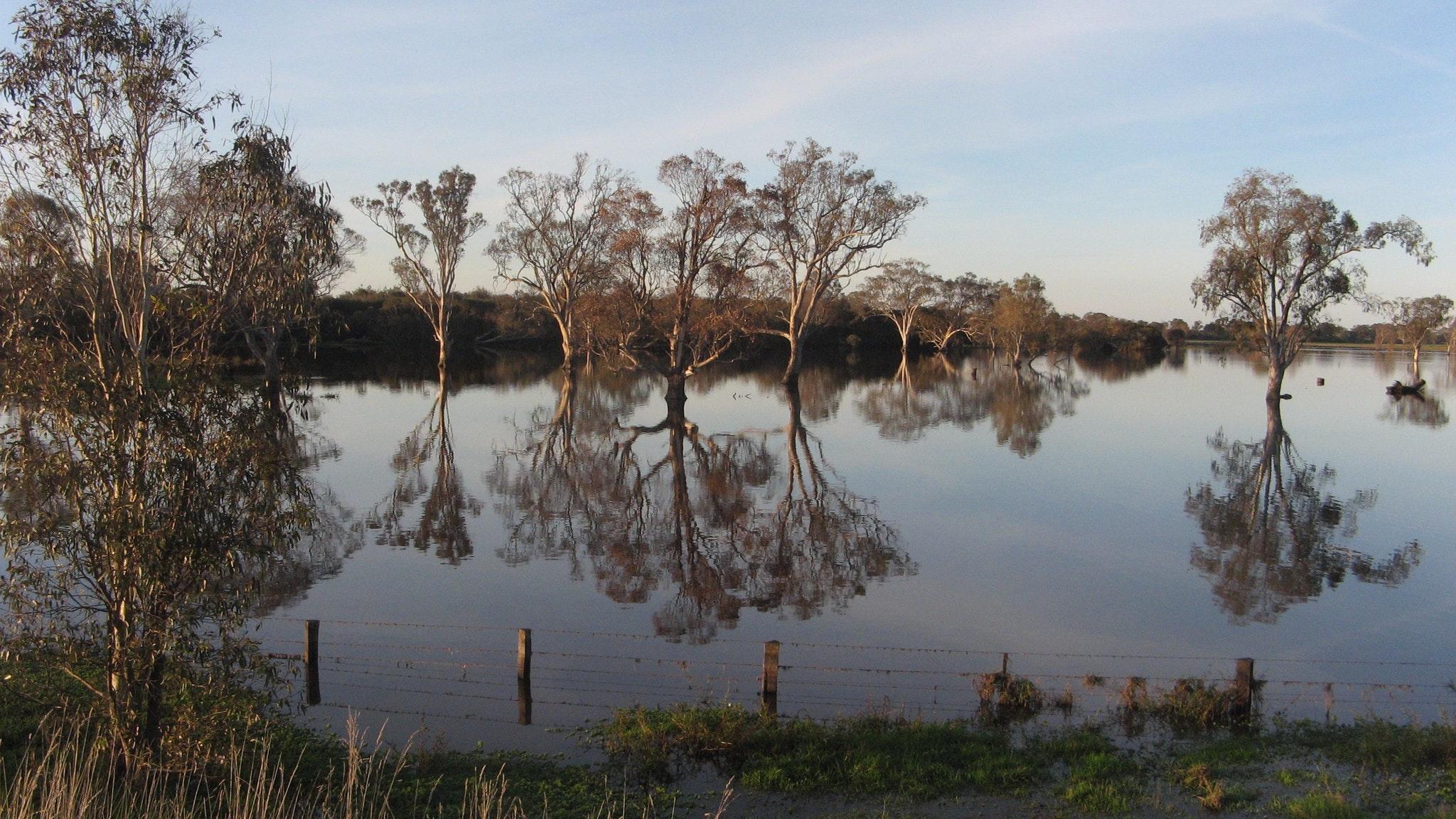 Sale Common Wetlands