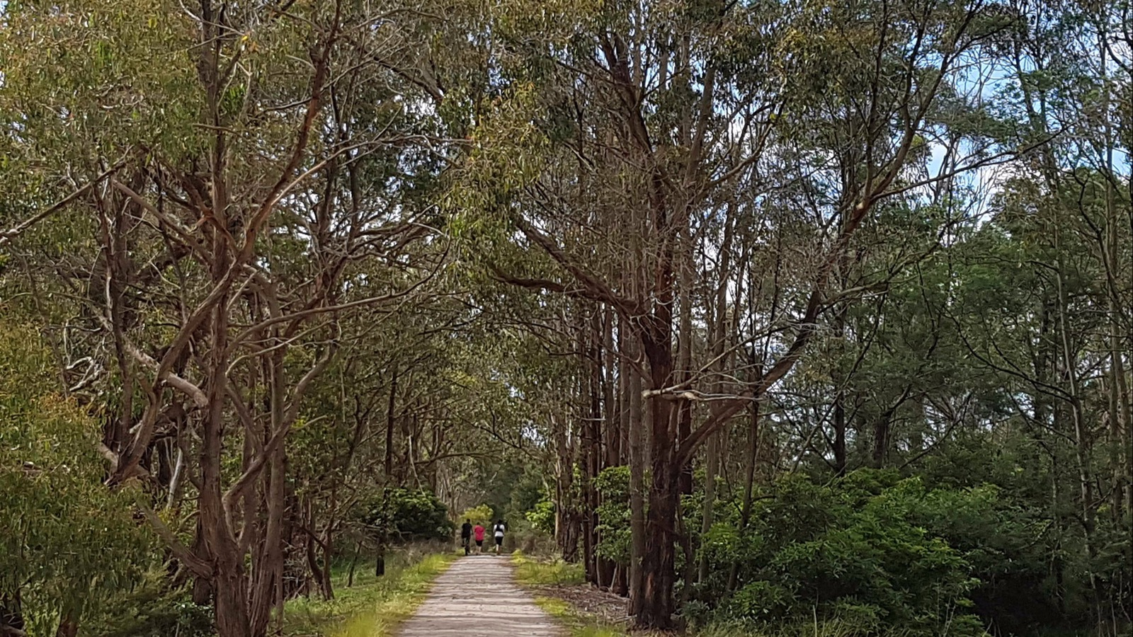 Enjoy the journey along the Great Southern Rail Trail.