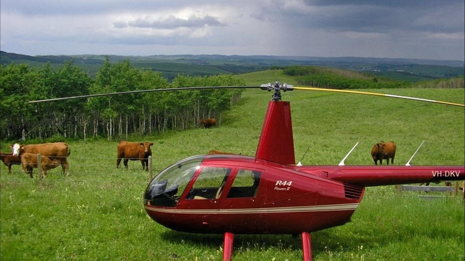 Robinson R44 VH-DKV