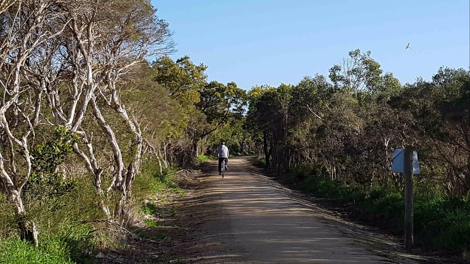 Enjoy the wetlands and the birds along the Bass Coast Rail Trail