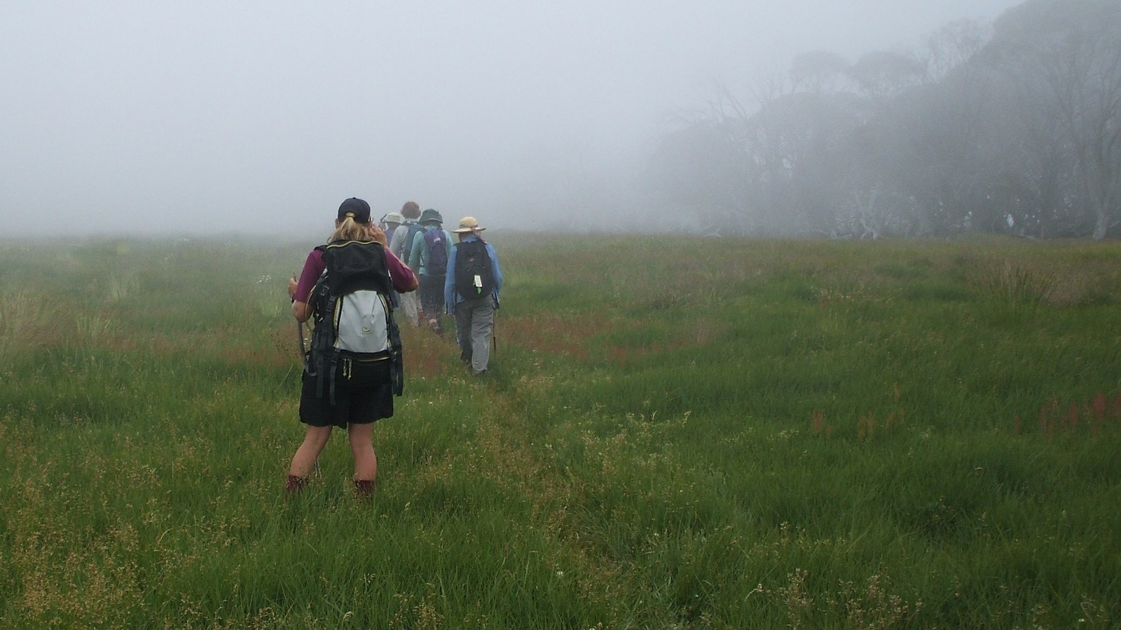 Walking across misty alpine plains