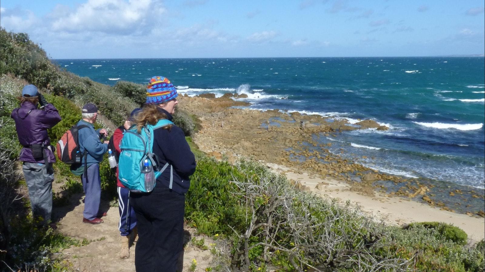 Croajingolong Coastal Eccotour - Small group and easy or moderate walks