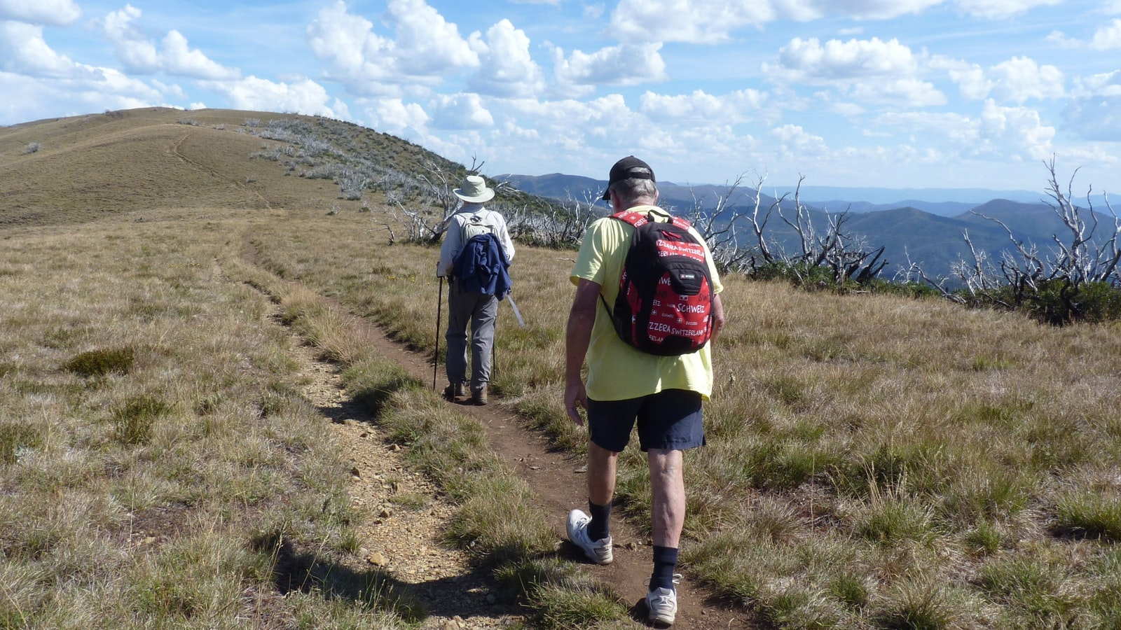 Walkers on Razorback Track in small group walking tour