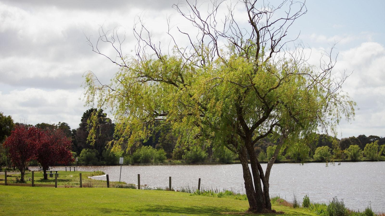 Beaufort Lake Caravan Park
