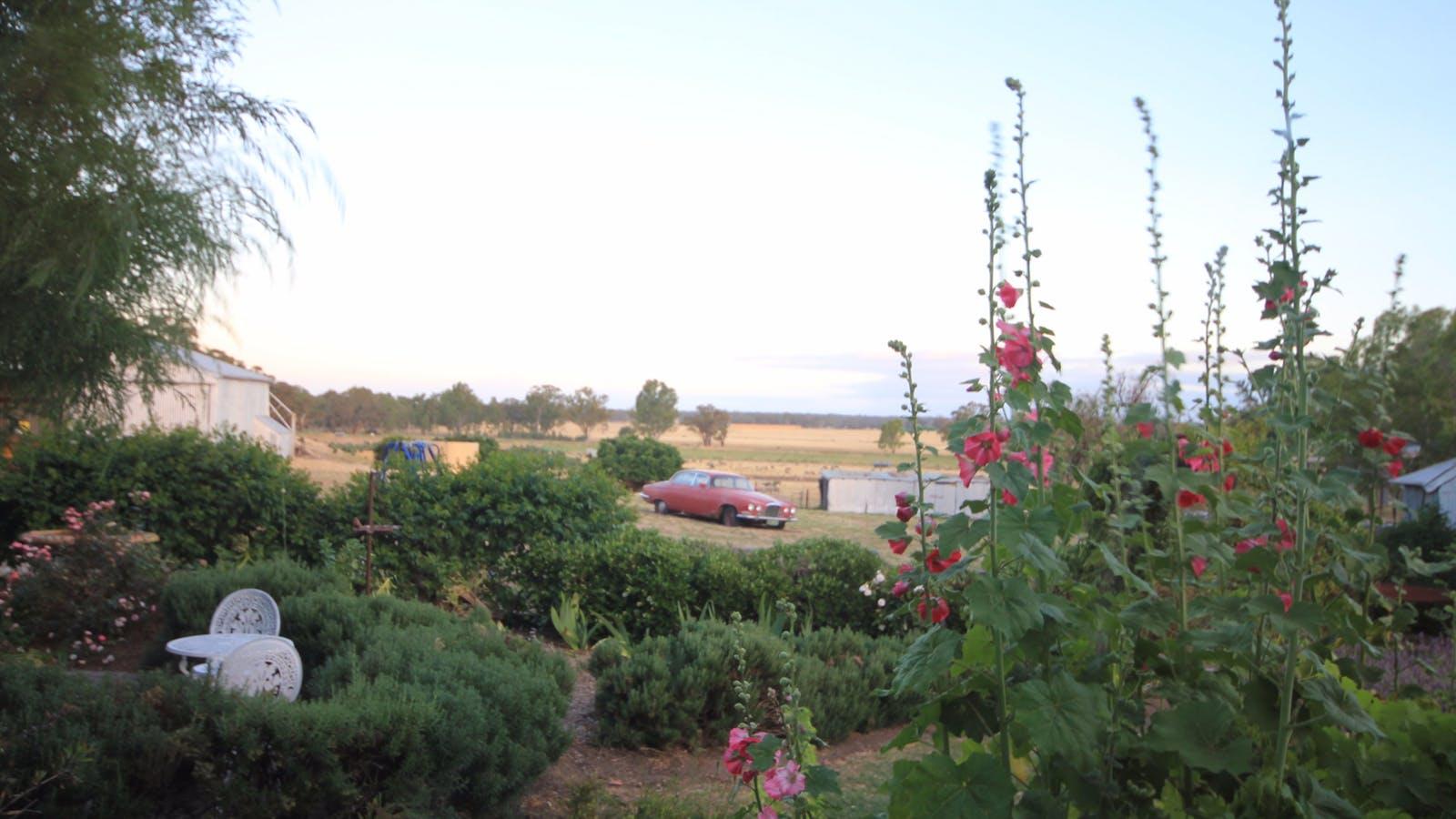 Overlooking the garden.