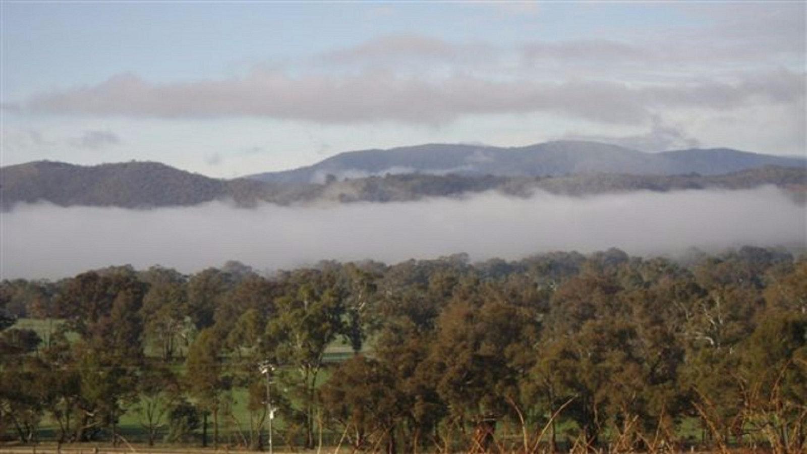 Misty morning over the hillside