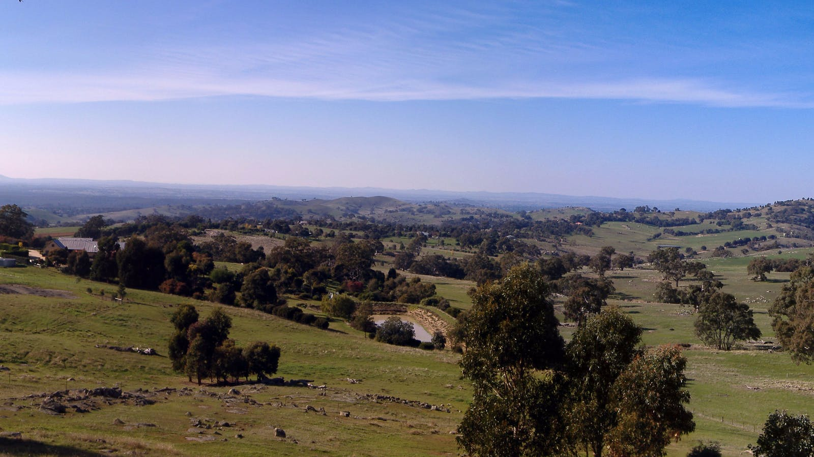 Panorama from the Lookout