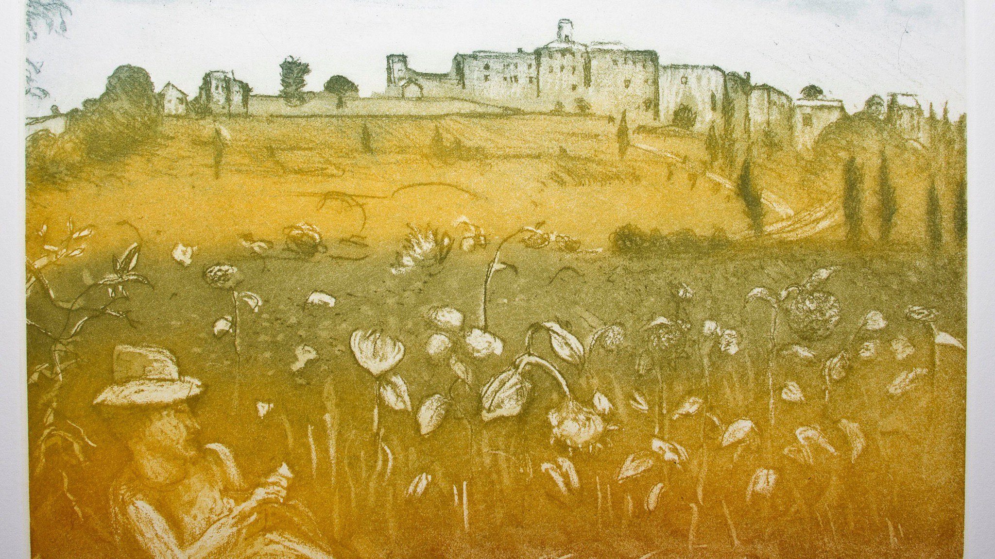 Arthur Boyd 'Sunflowers at Montefoscoli, Shanna Love Photography