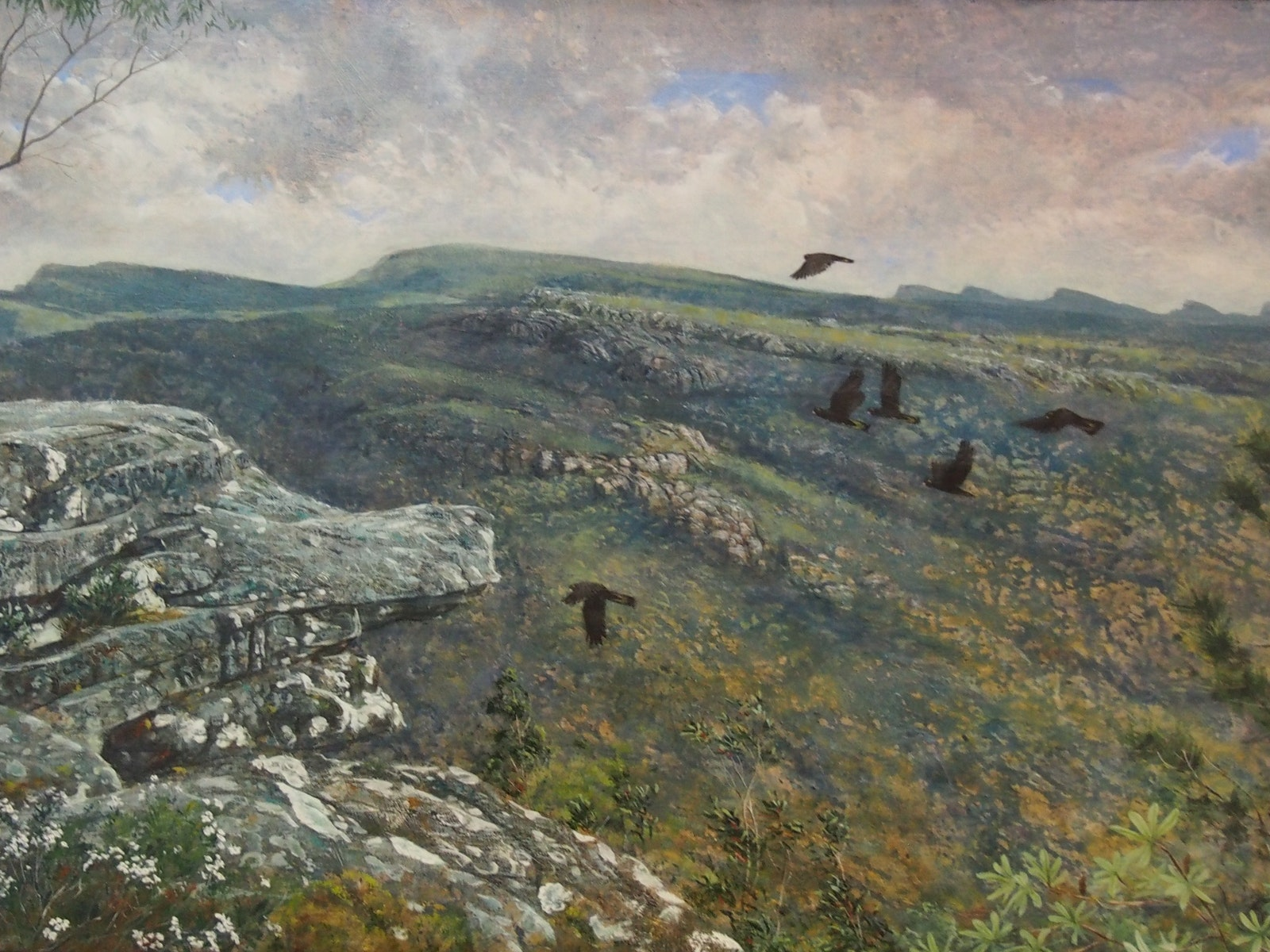 Painting of black cockatoos flying over the Grampians