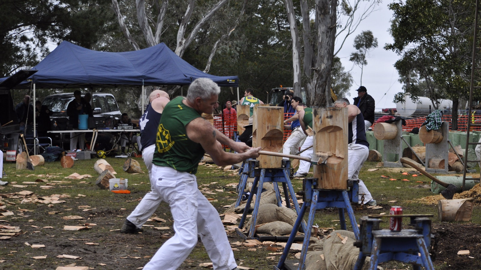 Action at the Metcalfe Woodchop