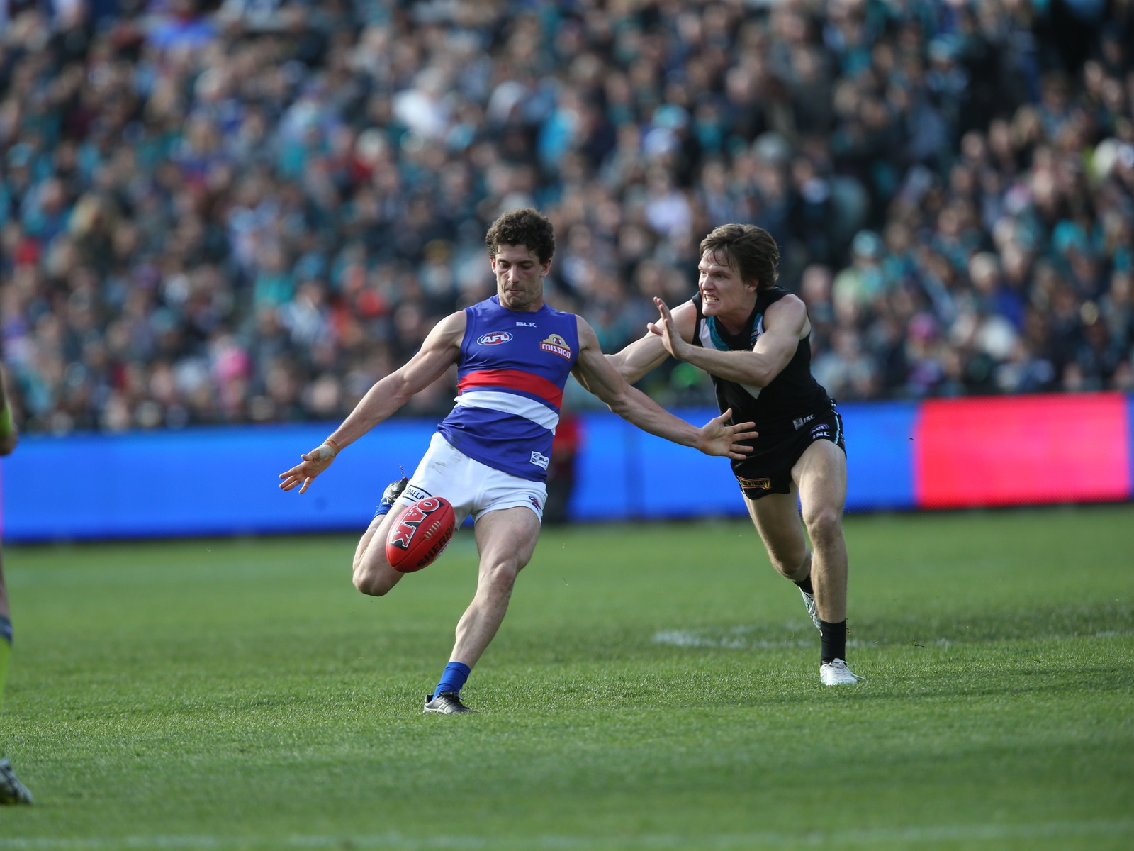 Western Bulldogs vs Port Adelaide - AFL Game (Ballarat)