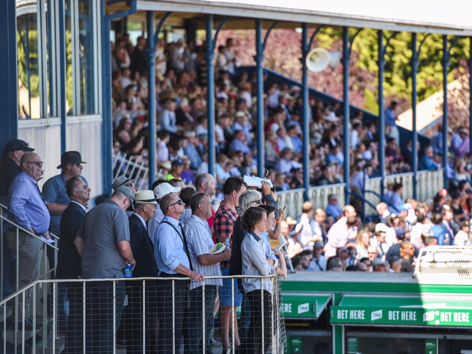 2016 Cup - Grandstand Crowd