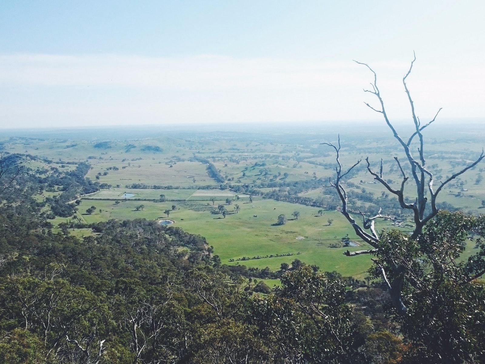 Mt Alexander view