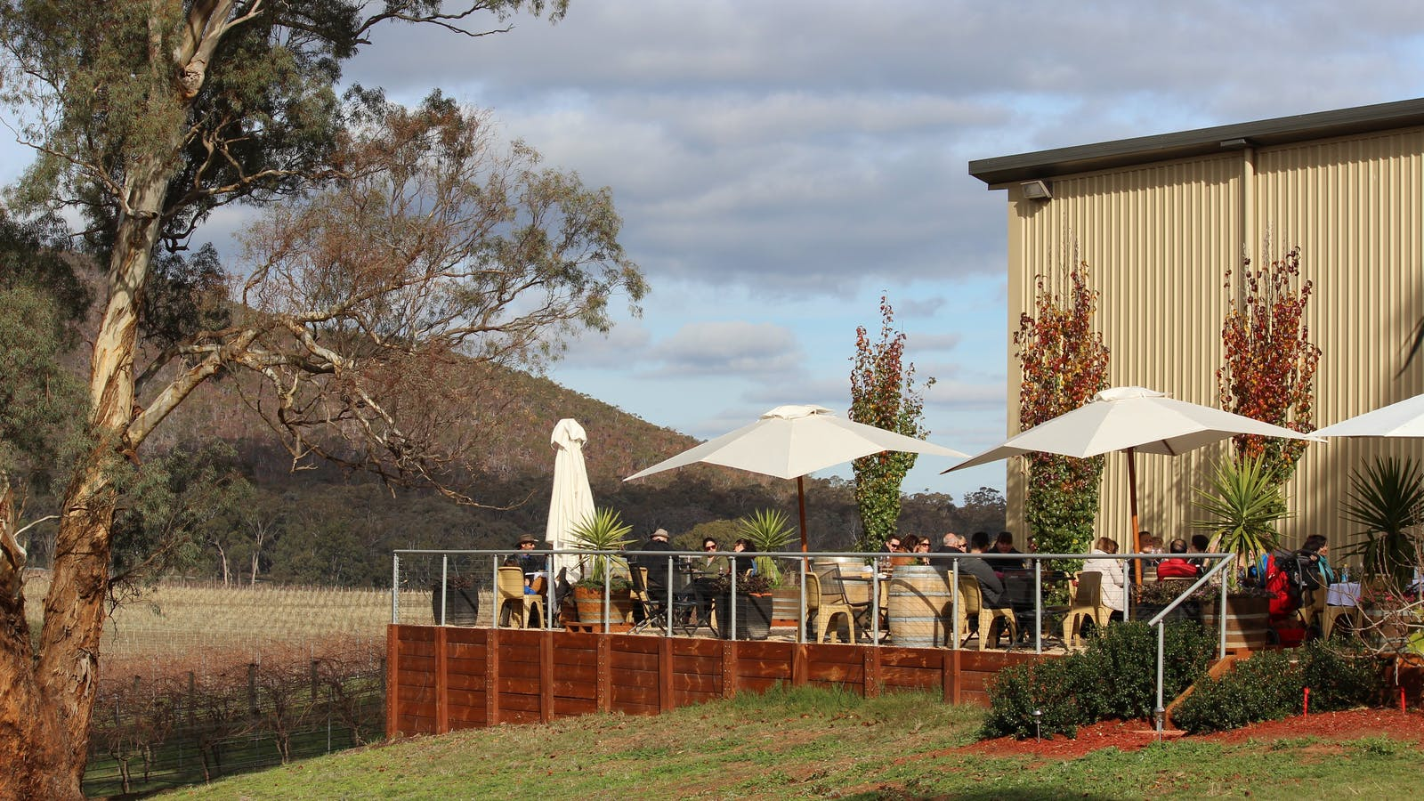 Winter winery