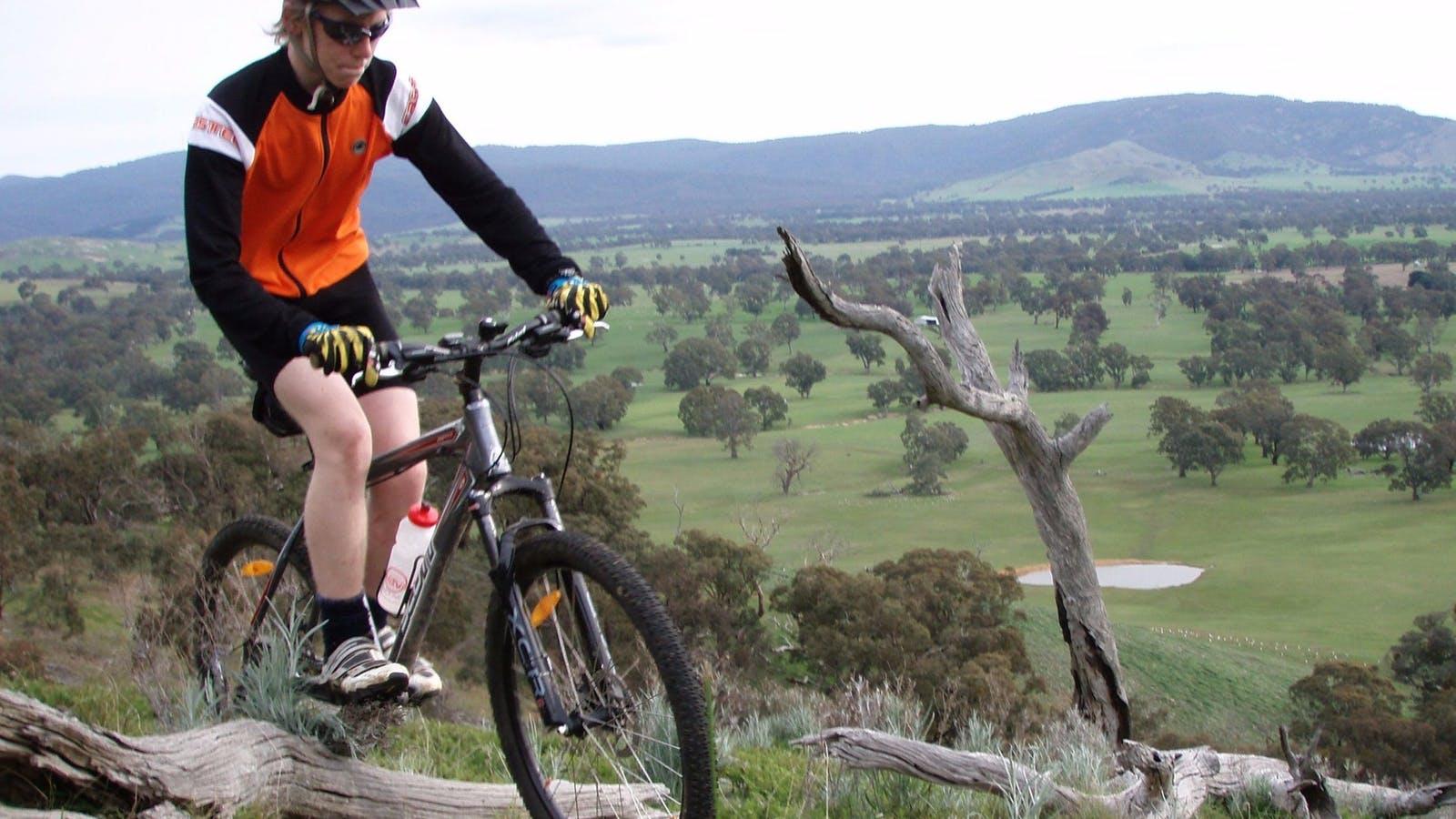 Mountain Bike tracks at Wimmera Hills Winery