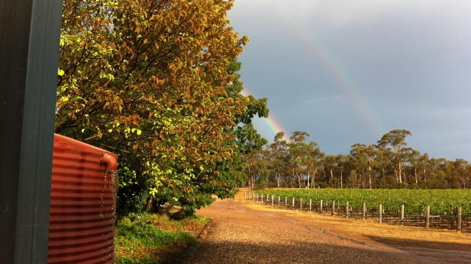 Rainbow follows some welcome rain
