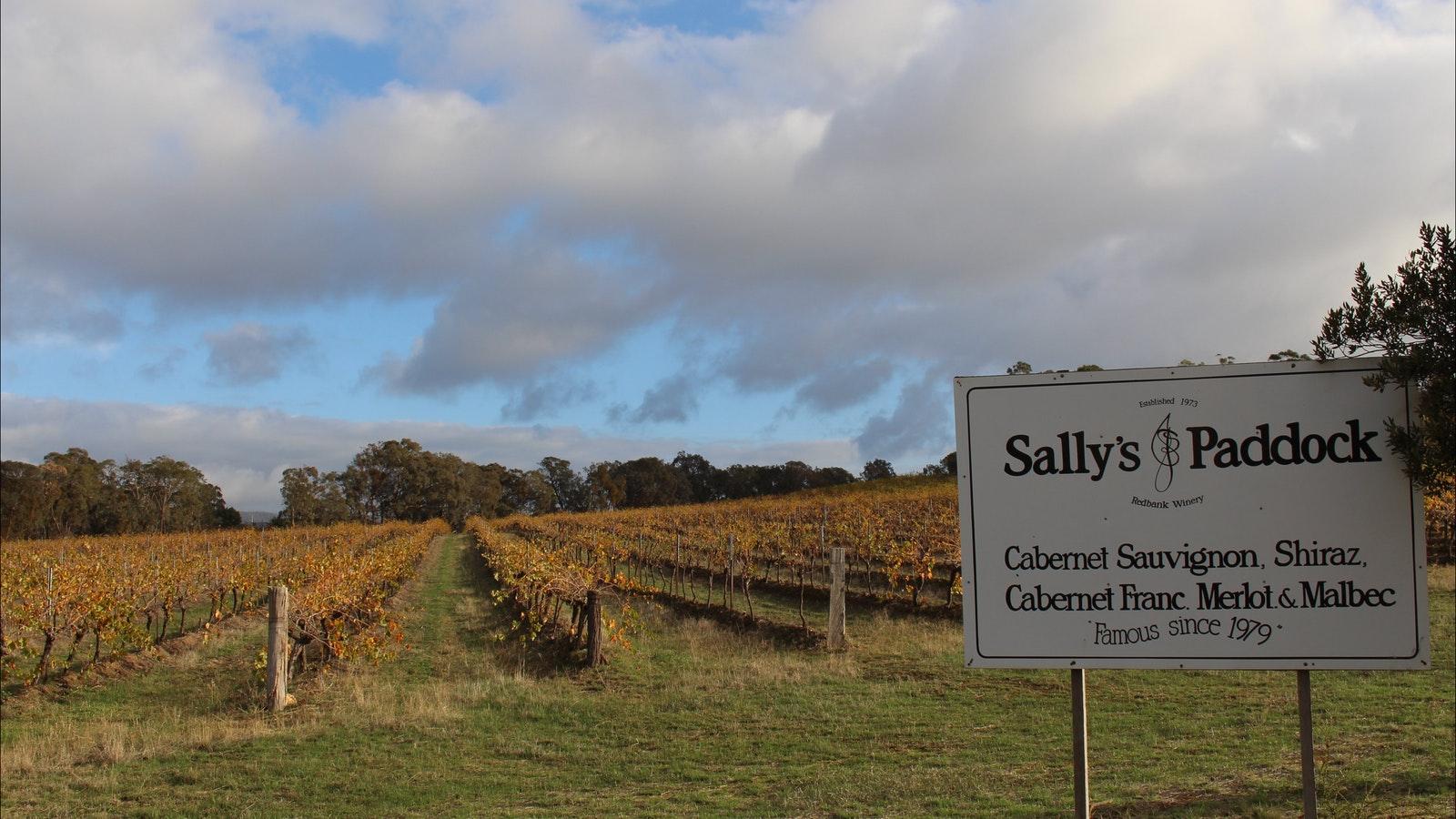 The Sally's Paddock vineyard