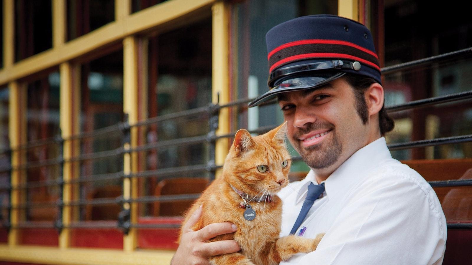 Bendigo Tramways - Birney the Cat
